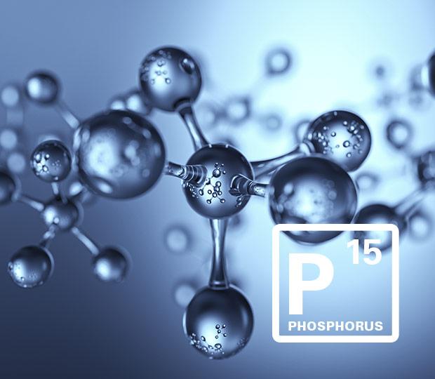 Phosphorrückgewinnung
